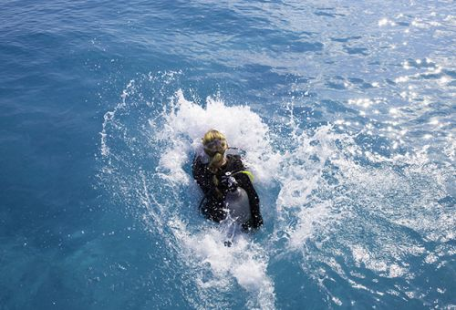 Update - Scuba Diver a Open Water Diver