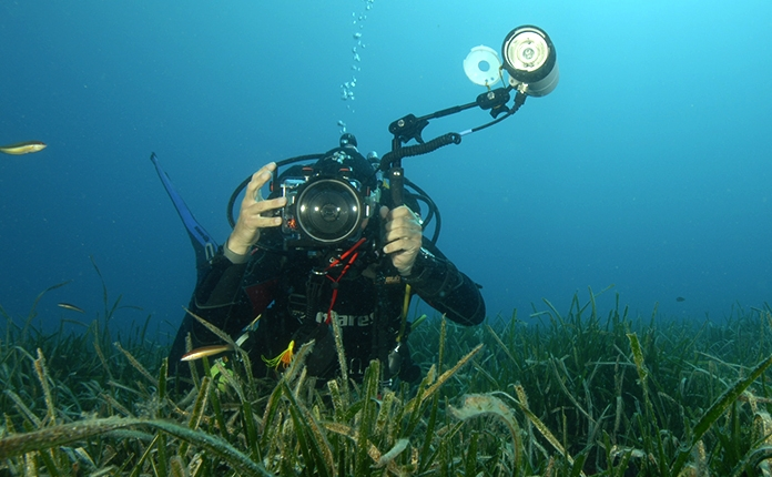 Specialty · Underwater Photographer