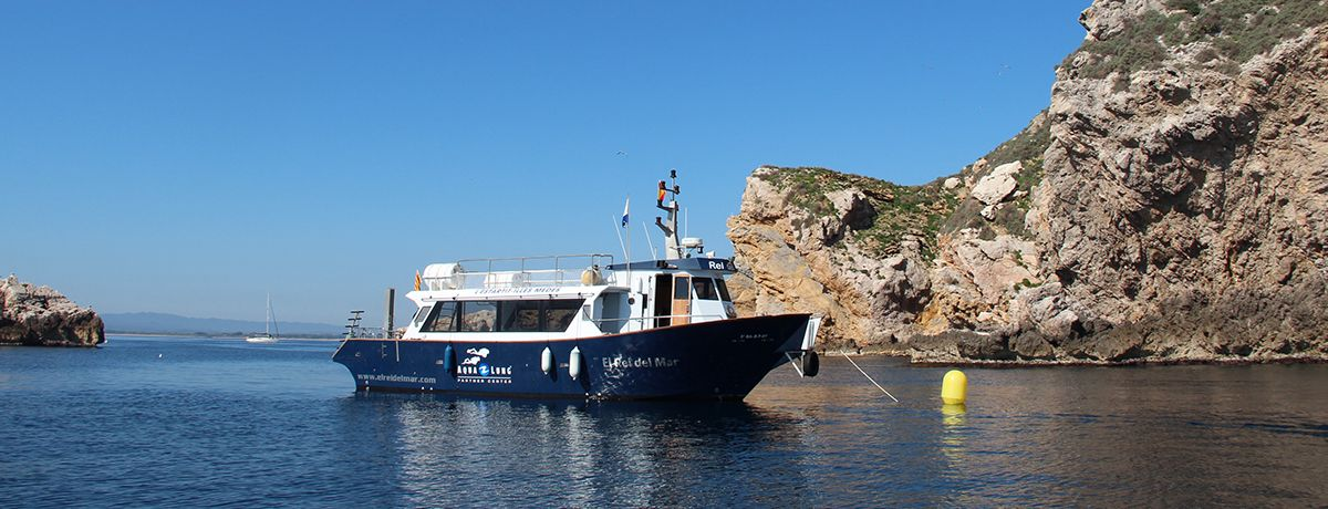 diving estartit boat