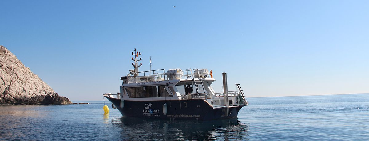 diving estartit big boat